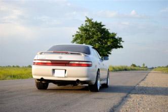 Технический регламент о безопасности колесных транспортных средств.